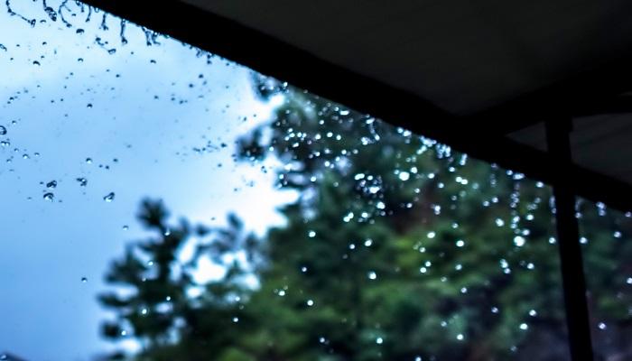 雨水节气养生 雨水节气养生注意事项